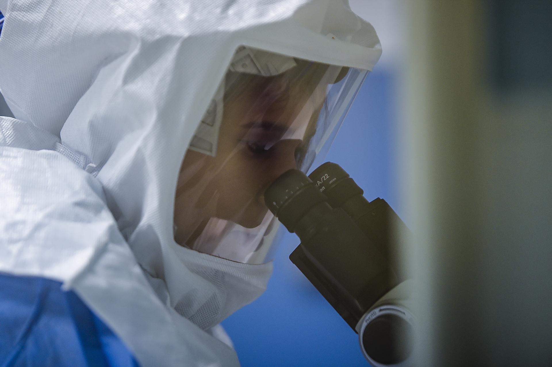 Que sait-on du virus Chapare, proche d'Ebola, qui inquiète les scientifiques ? - CNEWS