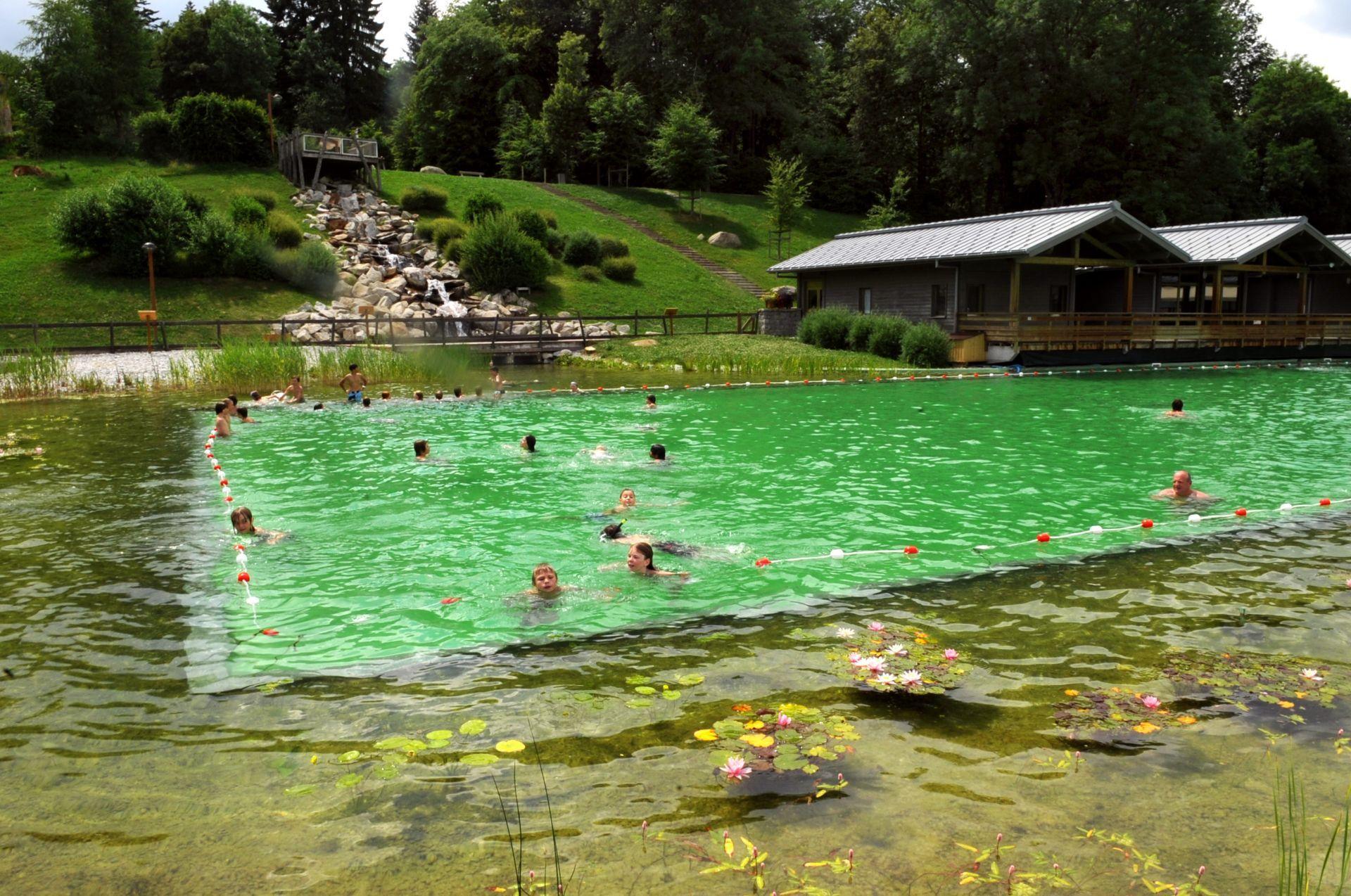 Piscine A Moins De 100 Euros les piscines 100% naturelles séduisent | www.cnews.fr
