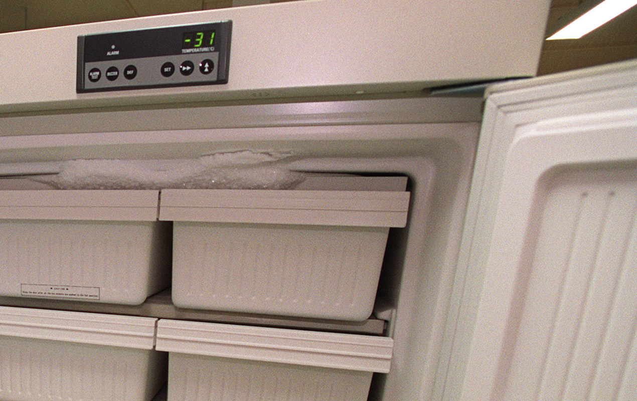 Voici pourquoi il est dangereux de recongeler un produit décongelé
