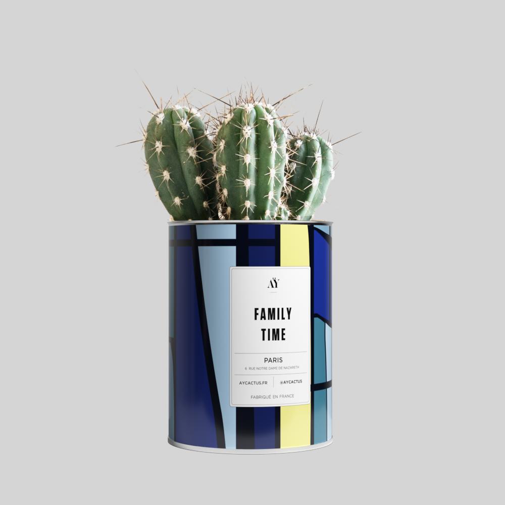 c_familytime_cactus_5db2de2db67a8.png