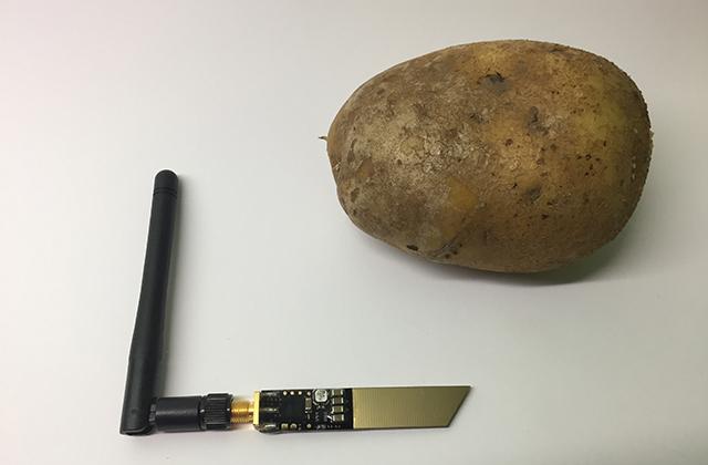 patate_connecte_ces_2020_potato_5e184d9c8d632.jpg