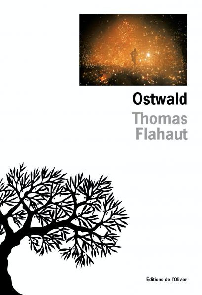 capture_thomas_flahaut_-_ostwald.png