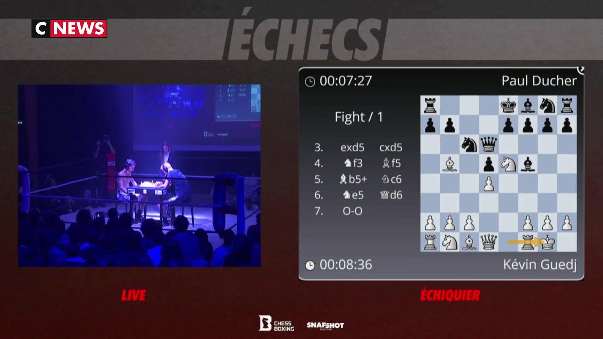 Le chessboxing, un sport qui mélange boxe et échecs