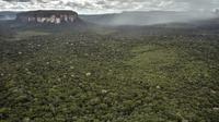 Par rapport à 2016, la déforestation s'est accrue de 23 % en 2017, selon un rapport publié, vendredi, par les autorités locales.