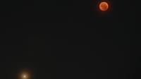 Mars sera la star de la 28e édition de la Nuit des étoiles. Depuis 15 ans, la planète rouge n'a jamais été aussi proche de la Terre.