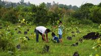 Un homme et ses enfants plantent un arbre en Inde, en septembre 2018.