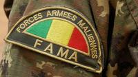 Un conseil des ministres extraordinaire, réuni dimanche par le président Ibrahim Boubacar Keïta, a également annoncé le remplacement des chefs d'état-major des armées, de l'armée de Terre et de l'armée de l'Air.
