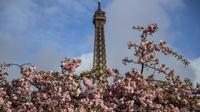 La capitale française a obtenu la note «A», qui distingue les villes mondiales les plus ambitieuses en matière de transition énergétique