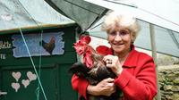 Corinne Fesseau et son coq Maurice.
