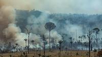 4.000 nouveaux départs de feu au Brésil depuis l'interdiction des brûlis agricoles.