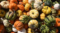Certaines variétés peuvent provoquer des douleurs digestives, nausées et vomissements.