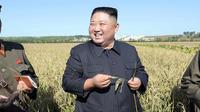 Kim Jong-un est satisfait de sa relation avec Trump.