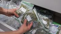 Israël fait figure de pionnier de la légalisation du cannabis thérapeutique. Le pays du Proche-Orient a mis en place sa législation en 1999, avant de l'étendre en 2006.
