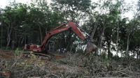 Des engins défrichent le site d'une future plantation de palmiers à huile, à Langkat, sur l'île de Sumatra, le 10 avril 2013 [Romeo Gacad / AFP/Archives]