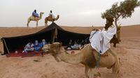 Un camp de nomades à M'Hamid el Ghizlane, dans le sud du Maroc, le 16 mars 2013 [Fadel Senna / AFP]
