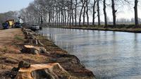 Le Canal du Midi, le 1er mars 2012 à Villeneuve-les-Béziers [Pascal Guyot / AFP/Archives]