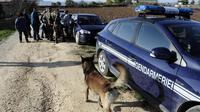 Les gendarmes français recherchent la jeune Chloé, le 14 novembre 2012 à Barjac [Pascal Guyot / AFP/Archives]