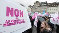 Des opposants au mariage pour tous, le 2 février 2013 à Strasbourg, dans l'est de la France [Frederick Florin / AFP/Archives]
