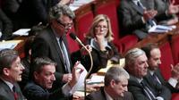 Jean-Louis Borloo le 12 février 2013 à l'Assemblée nationale à Paris [Jacques Demarthon / AFP]