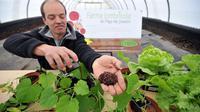 Pasacal Picard cofondateur de la ferme lombricole près de Josselin (Bretagne), le 2 mai 2013 [Frank Perry / AFP]