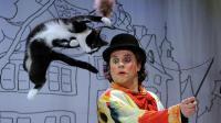 Une scène du spectacle du théâtre des chats de Moscou, le 3 mai 2013 [Yuri Kadobnov / AFP/Archives]