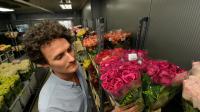 Louis Brunet vérifie les roses chez son fournisseur, le 10 mai 2013 à New York [Stan Honda / AFP]