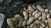 La plus grande purée de pommes de terre au monde, de plus de 1.000 kg selon la recette de Joël Robuchon, a été réalisée en moins de six heures samedi au Futuroscope de Poitiers