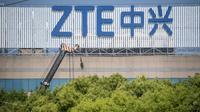 L'administration Trump a donné son feu vert à la reprise totale des activités de la société de télécommunications chinoise ZTE, en dépit du tollé parmi les sénateurs américains [Johannes EISELE / AFP/Archives]