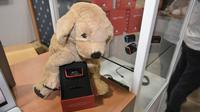 Ce gadget de Jagger & Lewis, qui mesure les émotions et l'activité de votre chien au CES de Las Vegas, le 11 janvier 2018 [MANDEL NGAN / AFP]