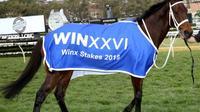 La jument Winx, à l'issue d'une victoire dans une course, le 18 août 2018 à Sydney [Bob Barker / AFP/Archives]