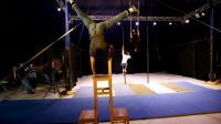 Des jeunes Palestiniens s'entraînent à l'école de cirque de Bir Zeit, en Cisjordanie occupée, le 22 mars 2016 [ABBAS MOMANI / AFP]