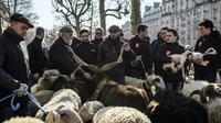 Des éleveurs lors d'une transhumance organisée en plein Paris, le 23 février 2018, à la veille de l'ouvertrure du salon de l'agriculture  [Philippe LOPEZ / AFP]