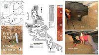Images fournies par la revue britannique Nature le 14 octobre 2015 montrant la localisation et l'intérieur de la grotte de Fuyan, dans le sud de la Chine, où 47 dents d'humains ont été trouvées [Y-J Cai, X-X Yang, and X-J Wu / NATURE/AFP]