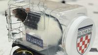 Une mini-voiture adaptée à la conduite par des rats, le 1er octobre 2019 en Virginie [HO / University of Richmond/AFP]