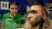 Un visiteur regarde une reconstitution scientifique du visage d'un homme de Néandertal, au Musée de l'évolution humaine de Burgos le 10 juin 2014 [CESAR MANSO / AFP/Archives]