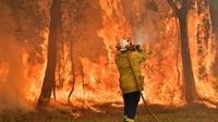Un pompier effectue des brûlis préventifs pour protéger des zones d'habitation, le 10 décembre 2019 au nord de Sydney [Saeed KHAN / AFP/Archives]