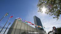 Le siège de l'ONU à New York le 24 septembre 2015. [DOMINICK REUTER / AFP]