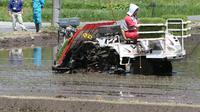 Le 18 mai 2013, reprise des plantations de riz à Tamura, à 15 kilomètres à l'ouest de la centrale nucléaire de Fukushima gravement endommagée par un tremblement de terre et un tsunami le 11 mars 2011  [Jiji Press / Jiji press/AFP/Archives]