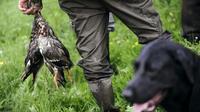 La France compte environ 1.250.000 chasseurs et la chasse est la troisième activité préférée de loisir des Français [Jean-Sebastien Evrard / AFP/Archives]