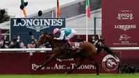 Enable remporte le 96e Prix de l'Arc de Triomphe, le 1er octobre 2017 à Chantilly  [Thomas SAMSON / AFP/Archives]