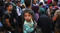 Des migrants à leur arrivée le 26 août 2015 à Presevo en Serbie  [ARMEND NIMANI / AFP]