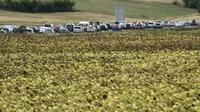 De longues attentes dans un péage de l'A7 à Vienne, en Rhône-Alpes, le 15 août 2015 [PHILIPPE DESMAZES / AFP/Archives]