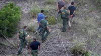 Des gardes-frontière arrêtent des immigrants près de Falfurrias au Texas, le 25 juillet 2014 [John Moore / Getty/AFP/Archives]
