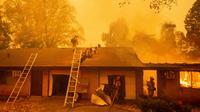 Des pompiers luttent contre le violent incendie qui menace des habitations à Paradise, en Californie, le 10 novembre 2018. [Josh Edelson / AFP]