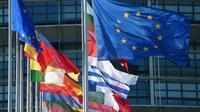 Les drapeaux européens et des pays membres de l'UE devant le Parlement européen, le 2 juillet 2019 à Strasbourg [FREDERICK FLORIN / AFP]
