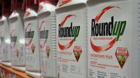 Bouteilles de Round'up, pesticide de  Monsanto, le 19 juin 2018 à Glendale (Californie) [Robyn Beck / AFP/Archives]