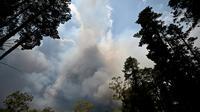Un important feu de brousse à Balmoral, située à 150 kilomètres au  sud-ouest de Sydney en Australie, le 19 décembre 2019 [Peter PARKS / AFP]