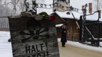 Une rose déposée à l'entrée du camp d'Auschwitz le 27 janvier 2013 [Janek Skarzynski / AFP/Archives]
