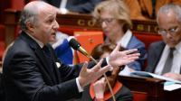 Le ministre des Affaires étrangères le 19 février 2014 à l'Assemblée nationale à Paris [Pierre Andrieu / AFP/Archives]