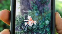 Le phénomène Pokemon Go est désormais téléchargeable sur smartphone en Allemagne, premier pays européen où est officiellement disponible ce jeu de réalité augmentée [Glenn CHAPMAN / AFP]